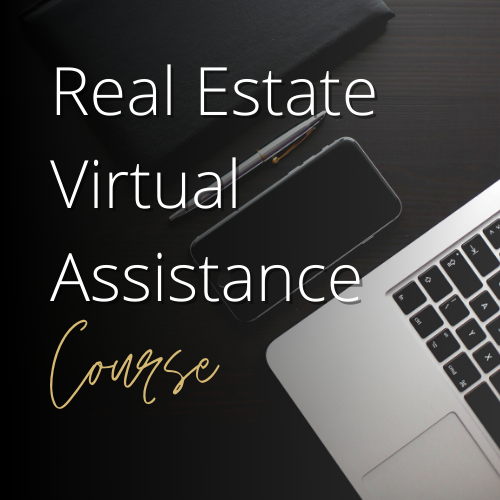 Online Course for Freelancer and Virtual Professional